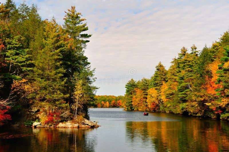 Caída Folliage y un lago. imágenes de archivo libres de regalías