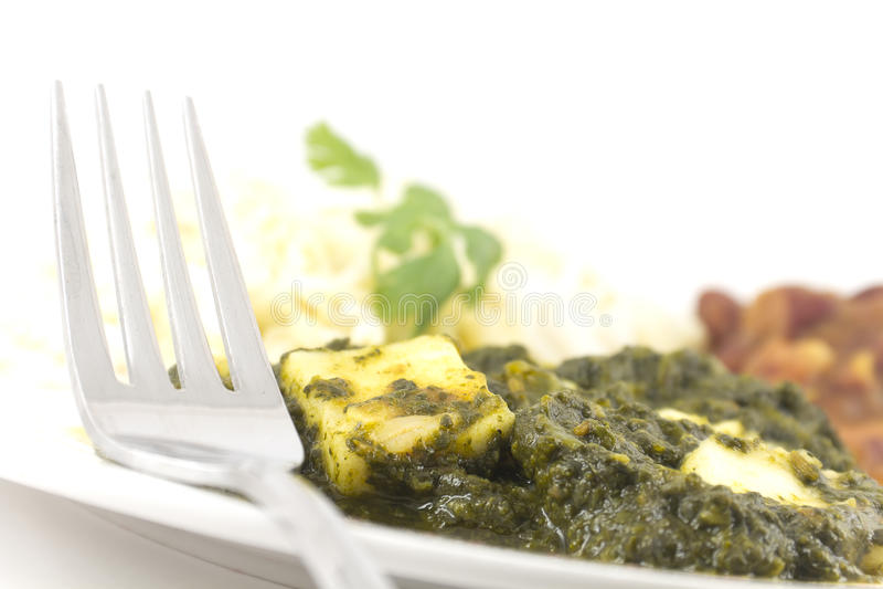 Caída Paneer - alimento indiano autêntico imagem de stock royalty free