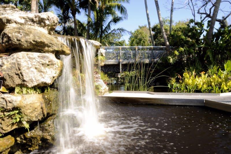 Caídas botánicas y piscina fotos de archivo libres de regalías