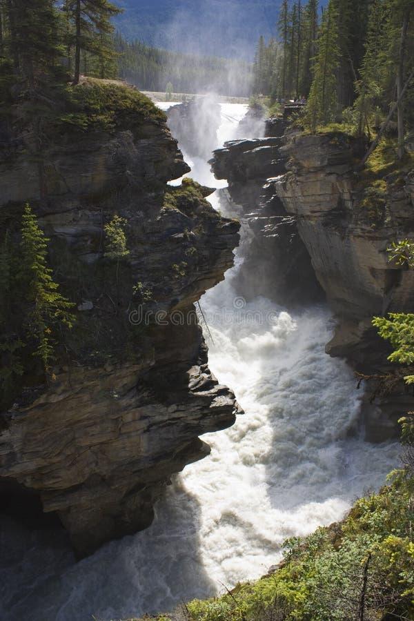 Caídas de Athabasca foto de archivo