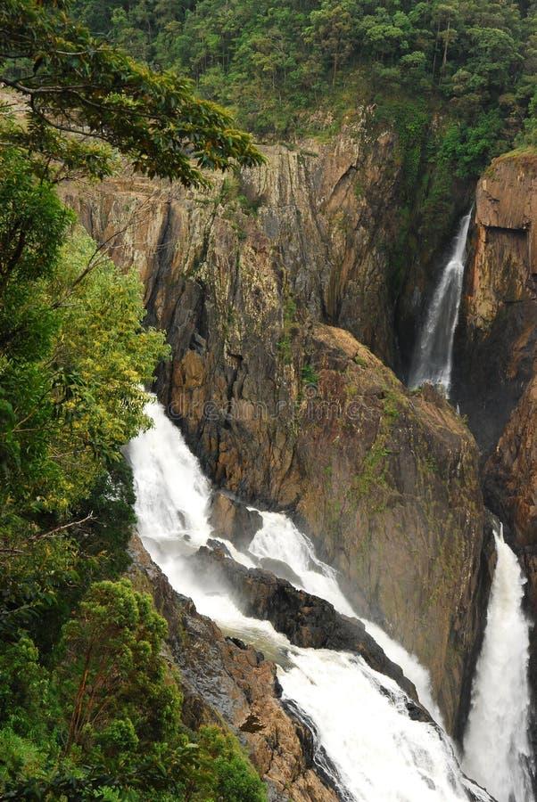 Caídas de Barron. Queensland del norte tropical. Australia imagen de archivo libre de regalías