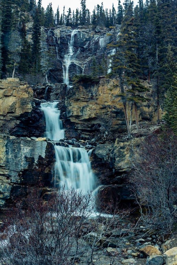 Caídas de la cala del enredo, Jasper National Park, Alberta, Canadá foto de archivo libre de regalías
