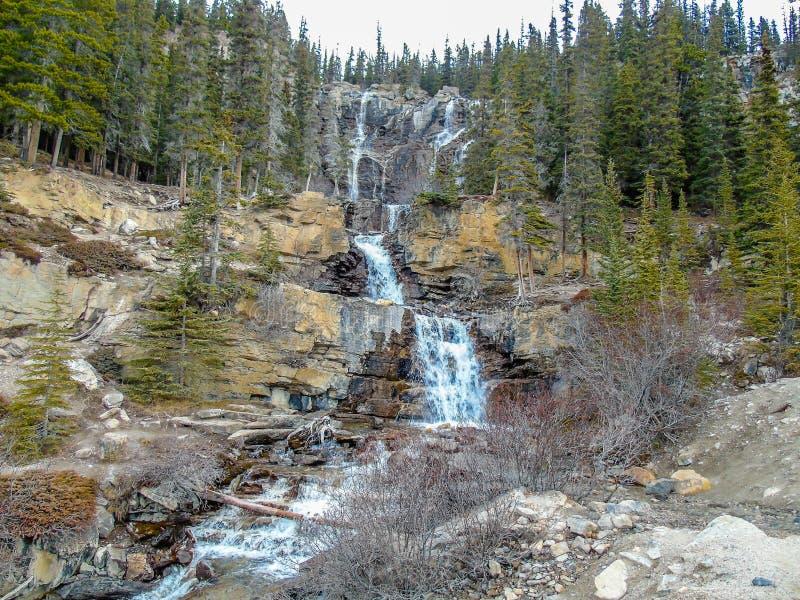Caídas de la cala del enredo, Jasper National Park, Alberta, Canadá foto de archivo