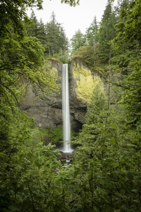 Caídas de Latourell, garganta del río Columbia, Oregon fotografía de archivo