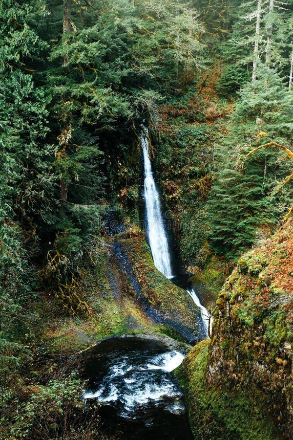 Caídas de Loowit, Oregon fotografía de archivo libre de regalías