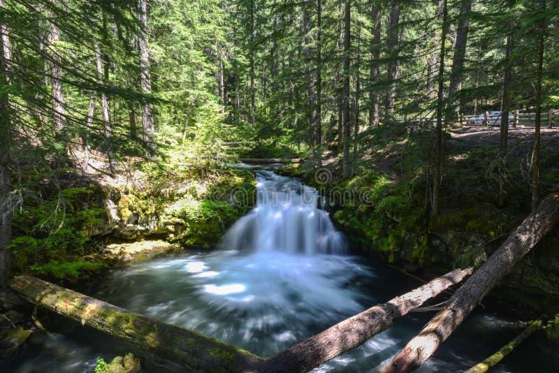 Caídas de Whitehorse, Oregon imagenes de archivo