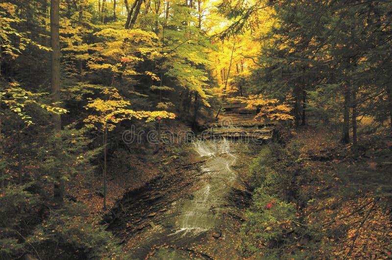 Caídas nupciales del velo, parque de la cala de los chapuceros, Ohio los E.E.U.U. foto de archivo libre de regalías