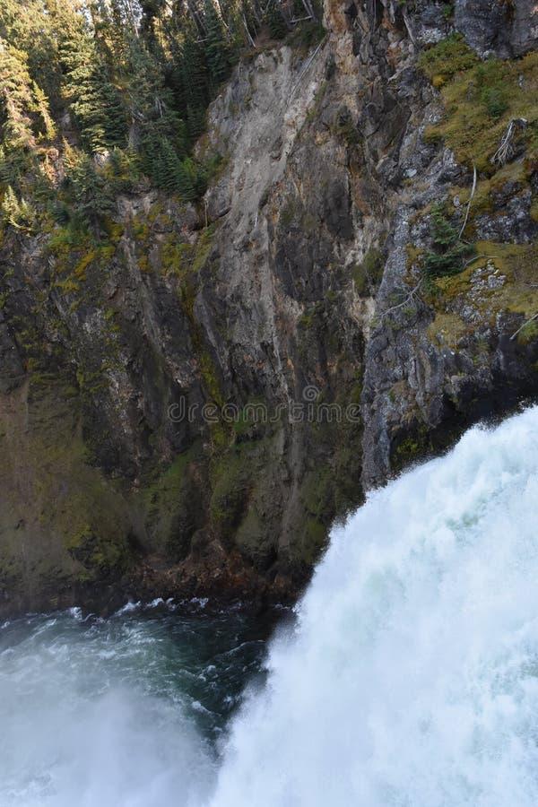 Caídas superiores de Grand Canyon del parque nacional de Yellowstone imágenes de archivo libres de regalías