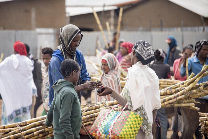 Caña de azúcar de compra en Etiopía fotografía de archivo