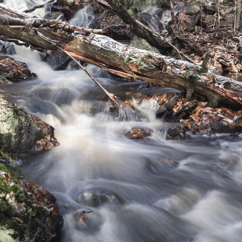 Cañada de Ricketts situada en Pennsylvania del este foto de archivo libre de regalías