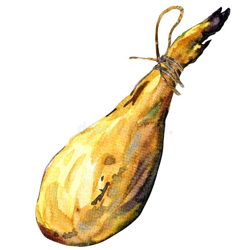 Cała noga Hiszpański Iberyjski serrano baleron na białym tle, ilustracja wektor