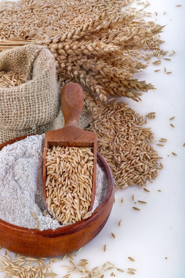 Cała pszeniczna mąka zdjęcie royalty free