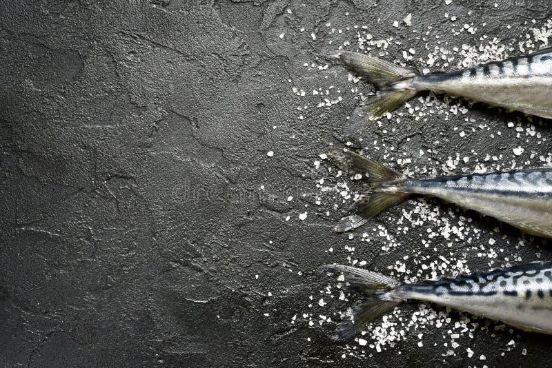 Cała surowa organicznie rybia makrela z morze solą Odgórny widok z kopią obrazy royalty free