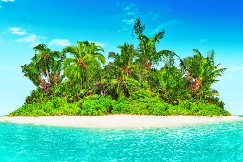 Cała tropikalna wyspa wśród atolu w tropikalnym oceanie fotografia royalty free