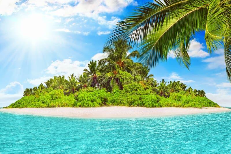 Cała tropikalna wyspa wśród atolu w tropikalnym oceanie zdjęcia royalty free