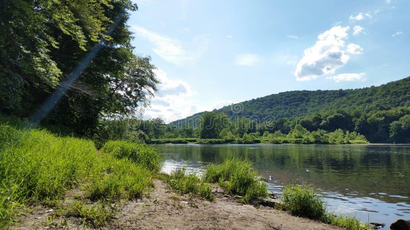 Całkiem rzeka w lesie Dość rzeczna woda płynąca w zielonym lesie otoczona górami, pod jasnym słońcem fotografia royalty free