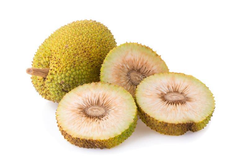 Całość i przyrodni świezi breadfruit na białym tle fotografia royalty free