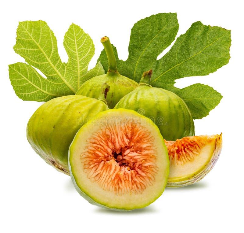 Całości i cięcia zieleni figi z figą, opuszczają fotografia royalty free