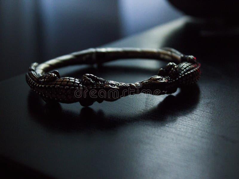 Całowanie krokodyle zdjęcie royalty free