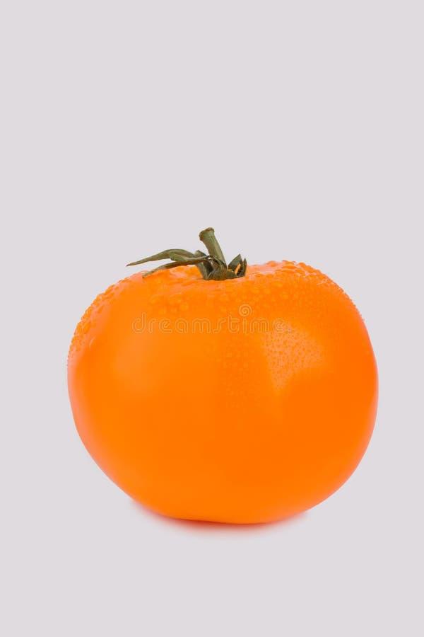 Cały dojrzały pomarańczowy pomidor odizolowywający na bielu zdjęcia royalty free