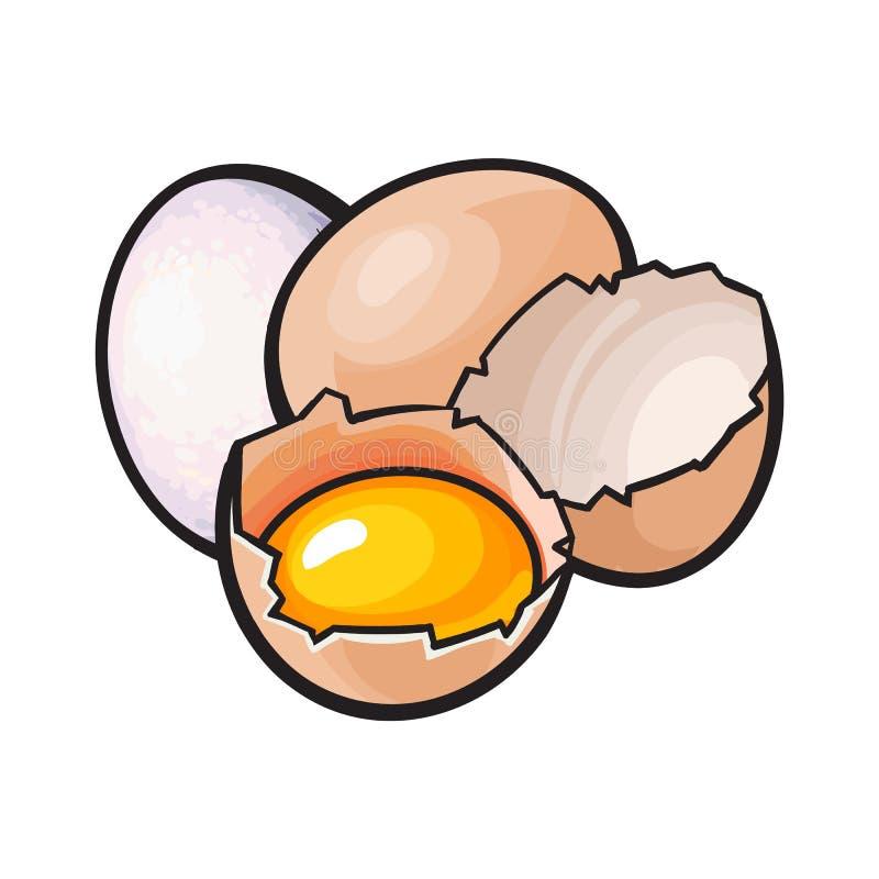Cały, krakingowy i łamający kurczaka jajko z yolk inside, royalty ilustracja