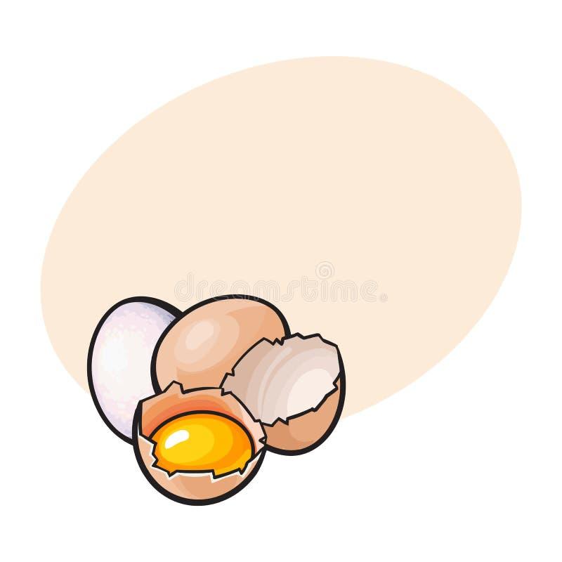 Cały, krakingowy i łamający kurczaka jajko z yolk inside, ilustracja wektor