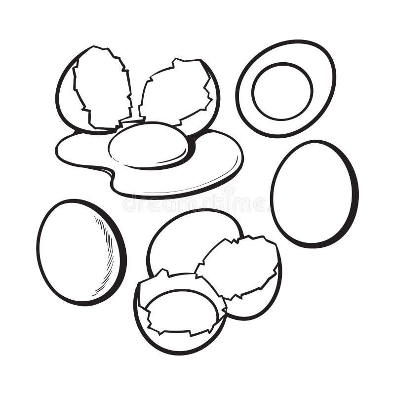 Cały, krakingowy i łamający skorupa kurczaka jajka skład, ilustracji