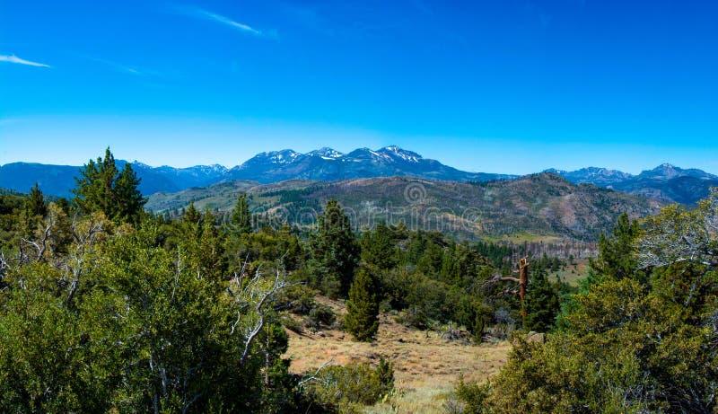CA89 Sierra Monitor Pass stockfotografie