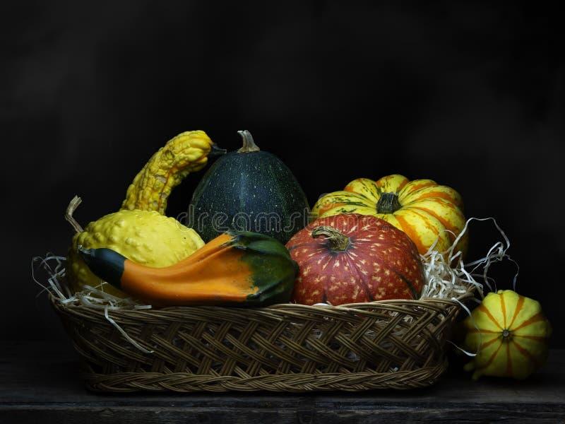 Cabaças decorativas, abóboras, abóboras na cesta Ainda vida 1 Claro-escuro, pintura barroco da luz do estilo fotos de stock