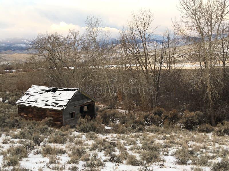Cabaña abandonada en Salmon Idaho foto de archivo