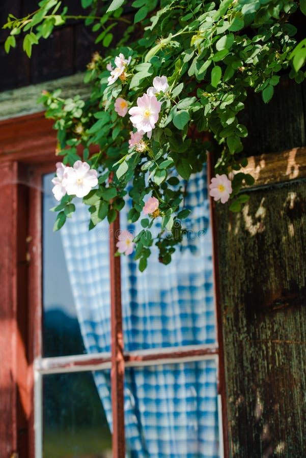 Cabaña alpina bávara idílica foto de archivo libre de regalías