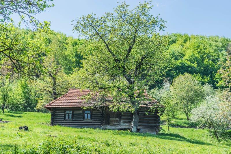 Cabaña de madera en los Cárpatos fotografía de archivo libre de regalías
