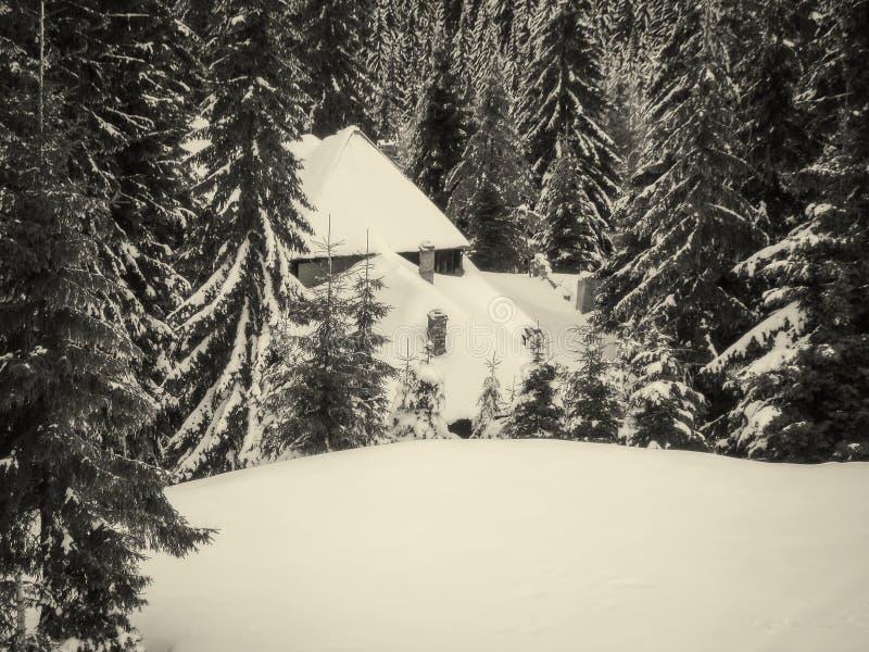 Cabaña de madera Nevado foto de archivo libre de regalías