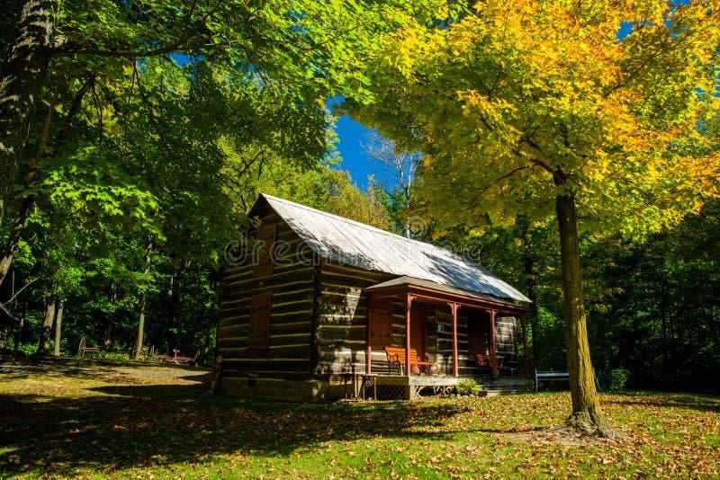 Cabaña de madera, otoño, almelund, Minnesota imagen de archivo libre de regalías