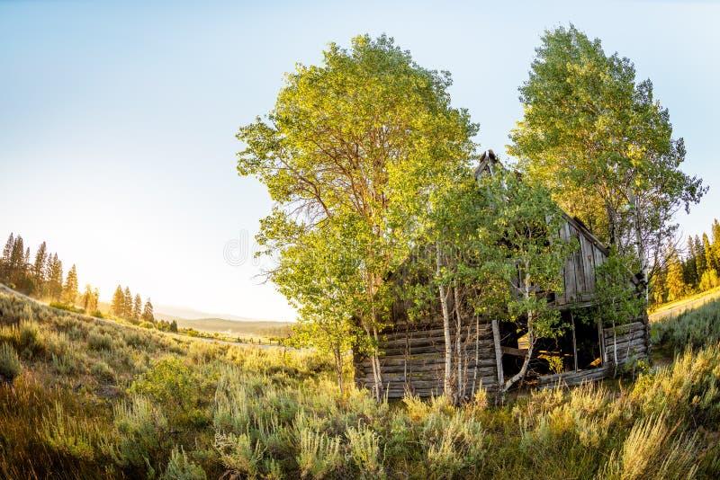 Cabaña de madera rústica en las montañas de Idaho foto de archivo