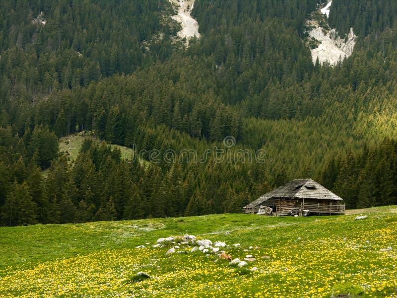 Cabaña del pastor en Rumania imágenes de archivo libres de regalías
