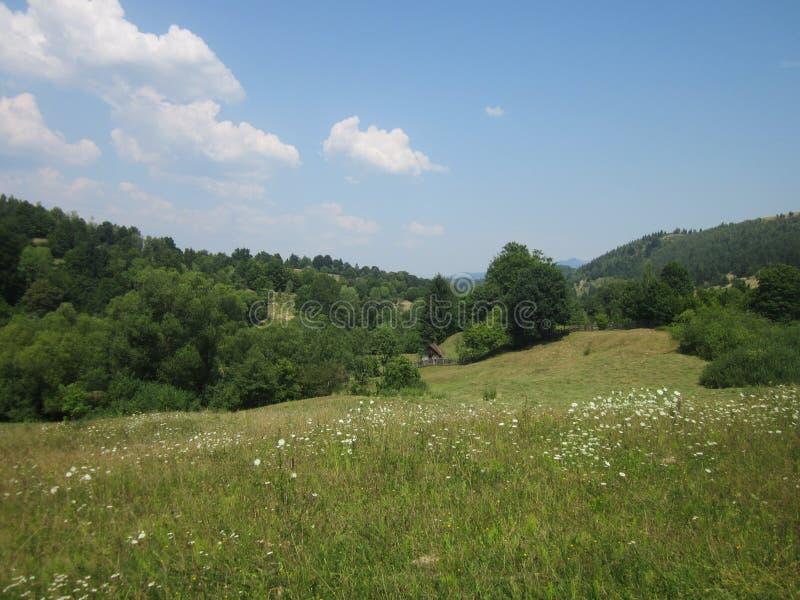 Cabaña del prado fotografía de archivo libre de regalías