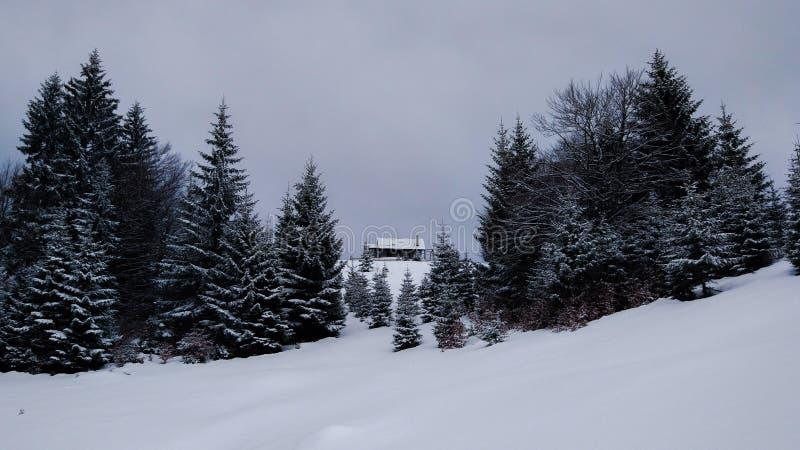 Cabaña distante durante invierno largo fotos de archivo
