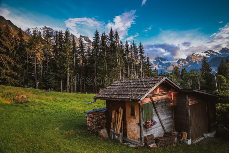 Cabaña en las montañas suizas foto de archivo