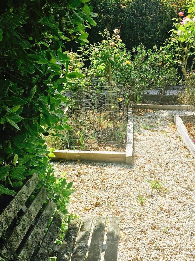 Cabaña Herb Garden del país imagen de archivo