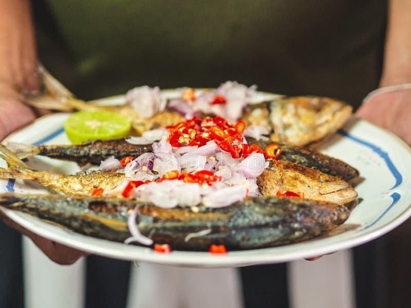 Caballas fritas picantes de la comida tradicional tailandesa fotos de archivo