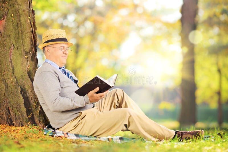Caballero mayor que se sienta en una hierba y que lee una novela en parque foto de archivo libre de regalías