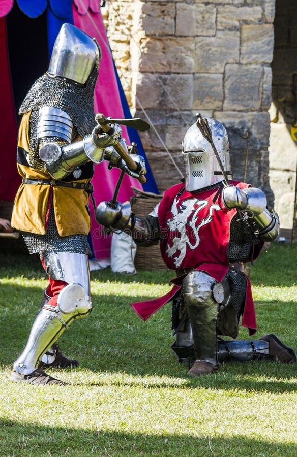 Caballeros en batalla Exhibición medieval Warkworth, Northumberland inglaterra Reino Unido fotos de archivo
