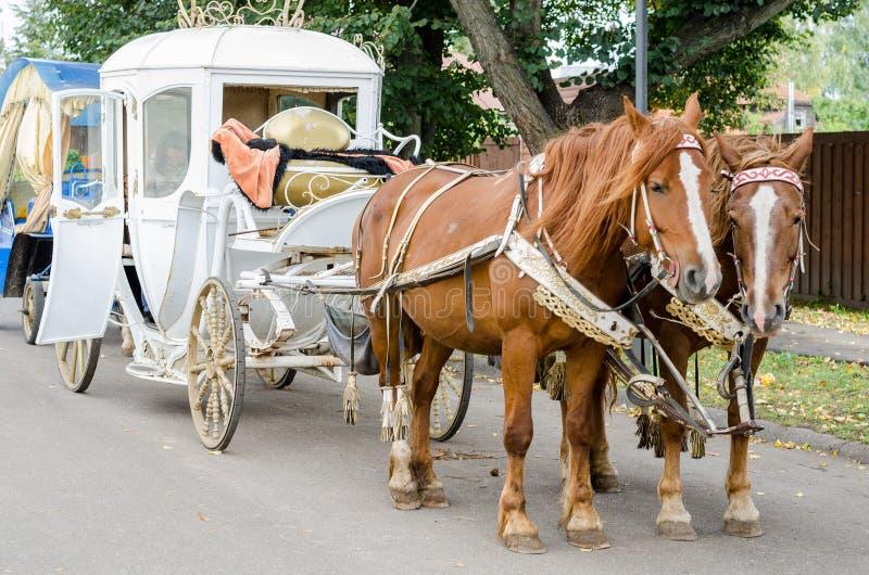 Download Caballo Con Un Carro Para Caminar Alrededor De La Ciudad De Suzdal Foto de archivo - Imagen de carro, historia: 100529686