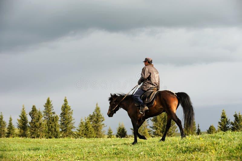 Caballo de montar a caballo chino de los ganaderos del Kazakh en prado fotos de archivo