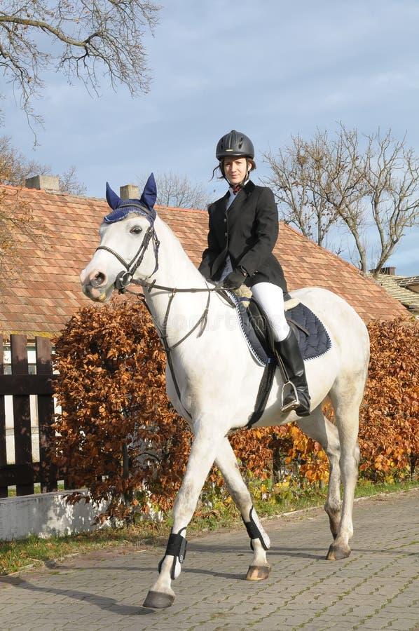 Caballo de montar a caballo de la muchacha fotografía de archivo libre de regalías