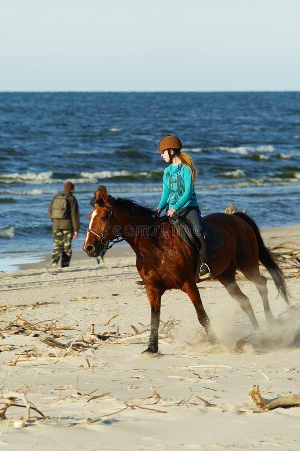 Caballo de montar a caballo de la mujer joven en la playa foto de archivo