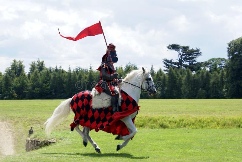 Caballo de montar a caballo del caballero en un campo imagen de archivo libre de regalías