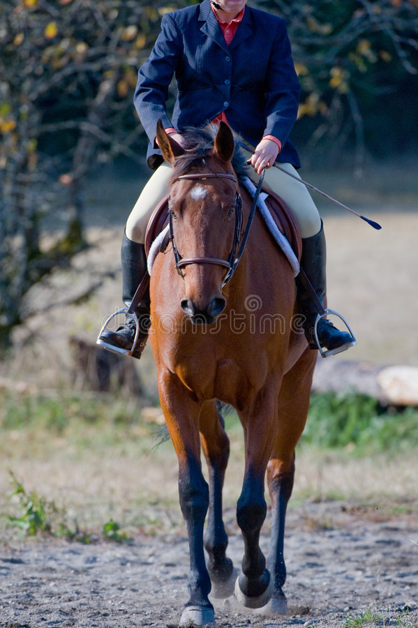 Caballo de montar a caballo del jinete en pista imagen de archivo