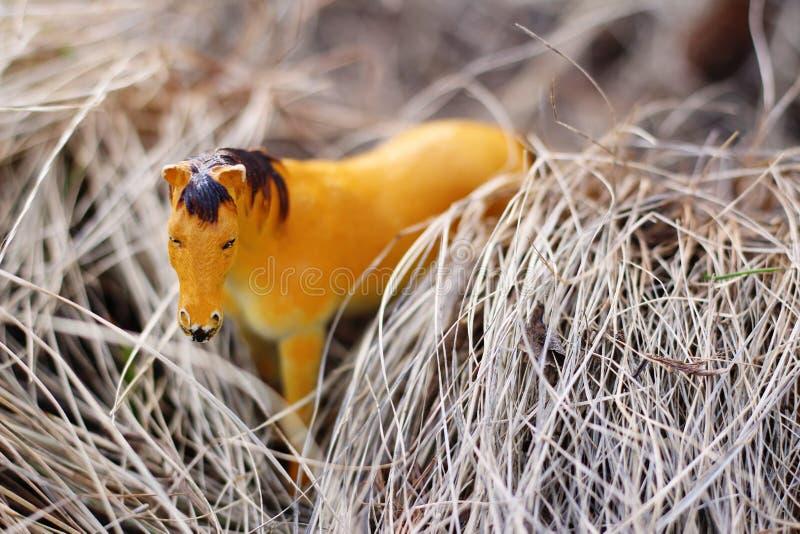 Caballo del juguete en la naturaleza fotografiada como real entre imagen de archivo